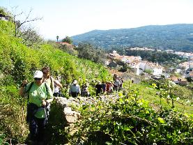 walking tours in Monchique, algarve