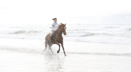 equestrian holiday Southwest Portugal